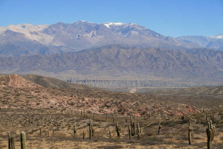 Mountains and cardones on the way to Cachi