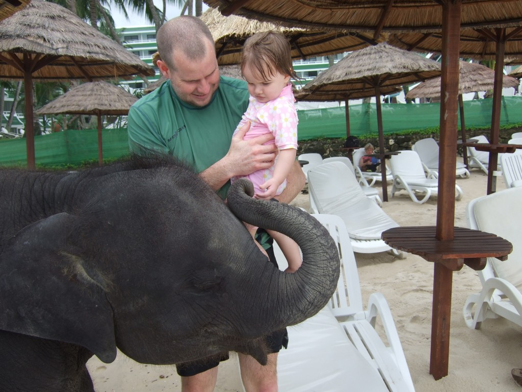 The resident resort baby elephant (who we are assured is treated well and ethically)