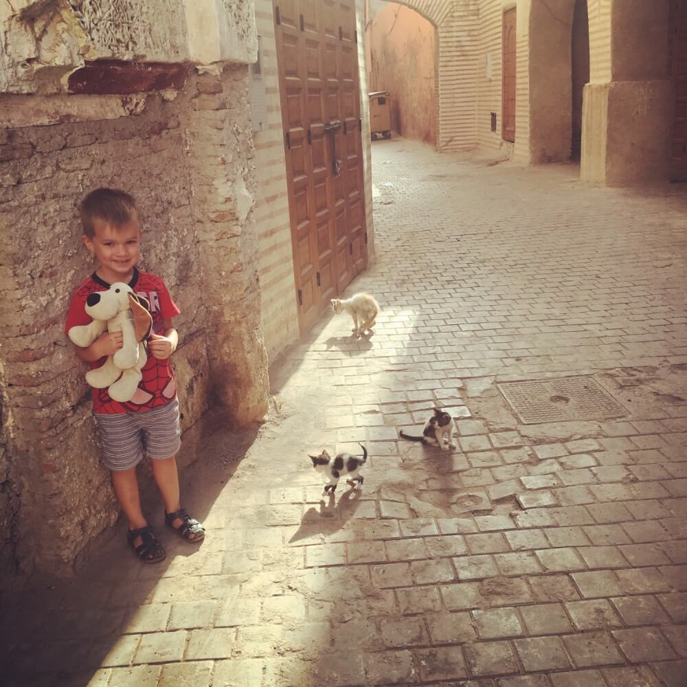 The medina is a great place to explore morocco with kids