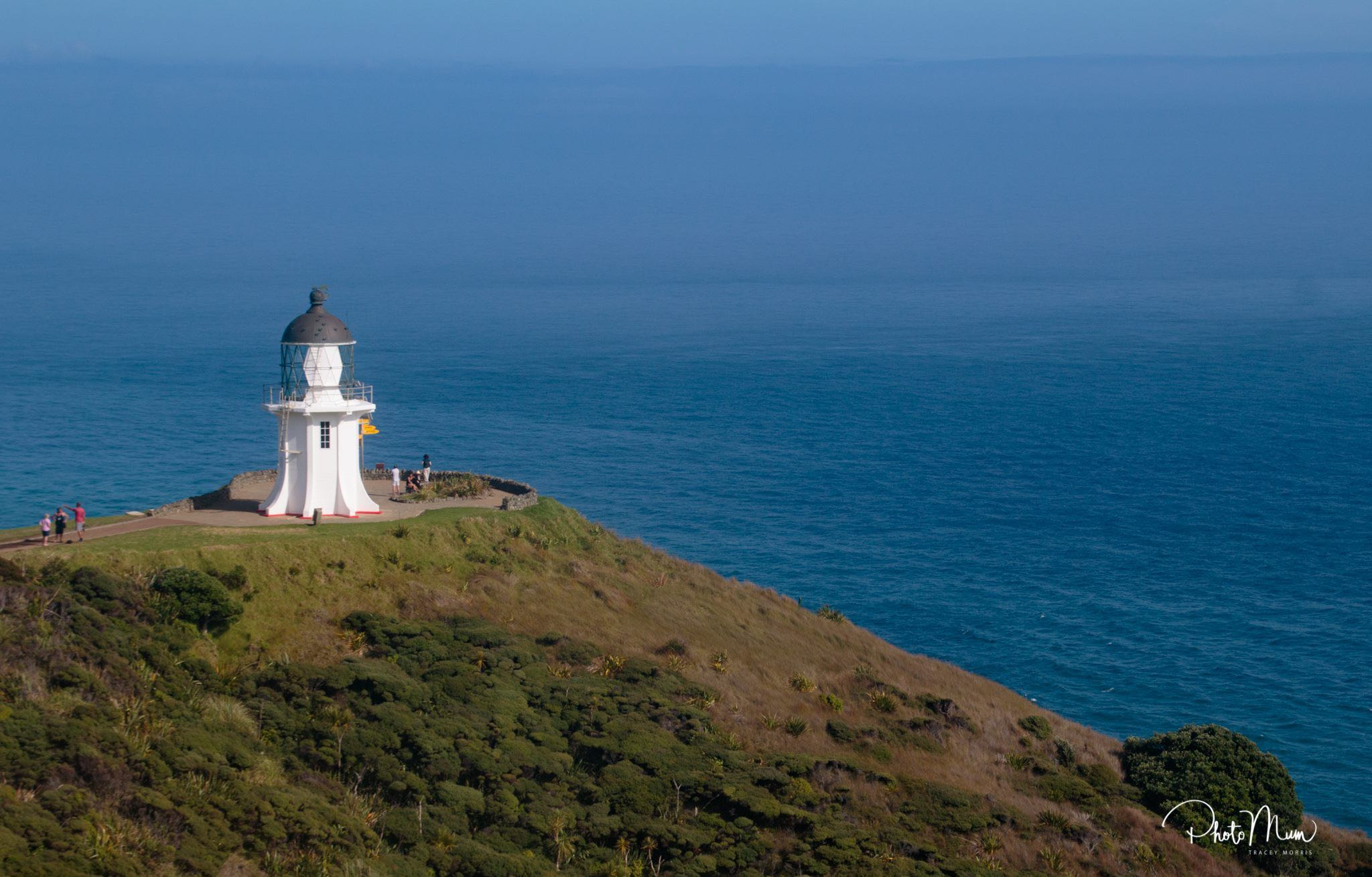 Cape Reinga (photo courtesy of Photo Mum)