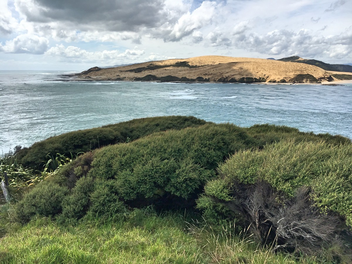 Entrance to the Hokianga Harbour and giant sand dunes